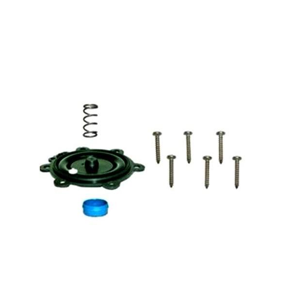 100DV membrána kit     21074603